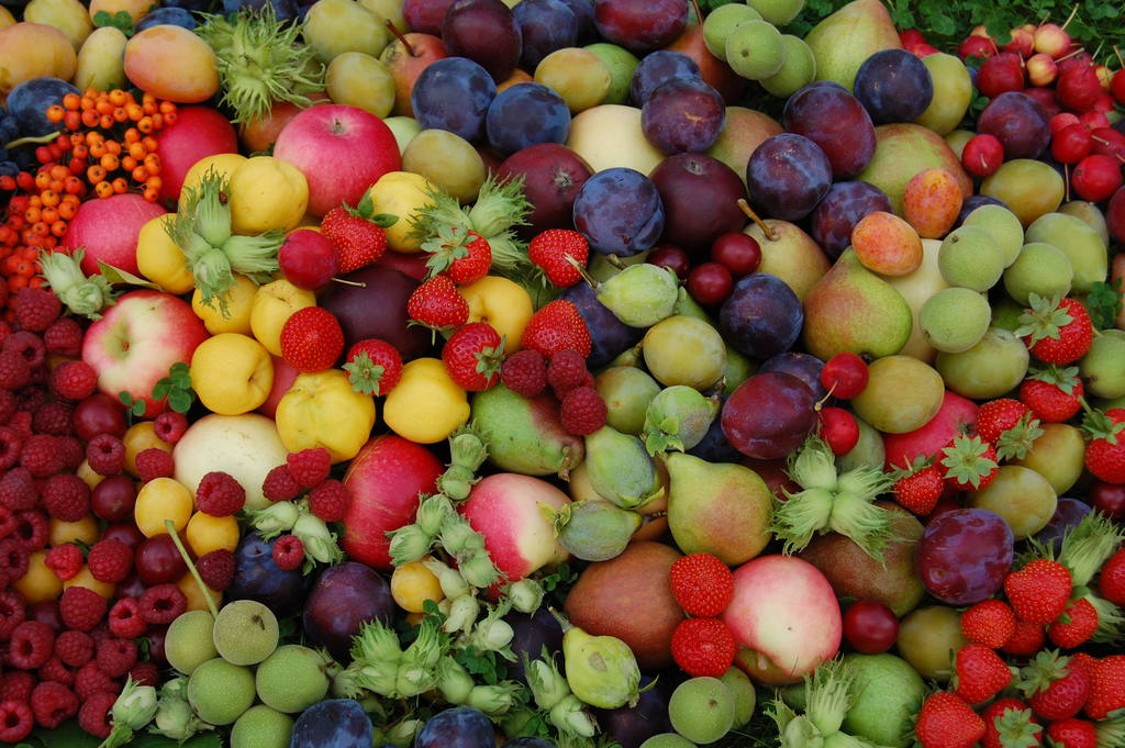 fruit and vegetables liquid diet itinerary